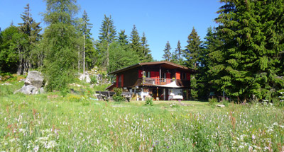 location chalet orbey